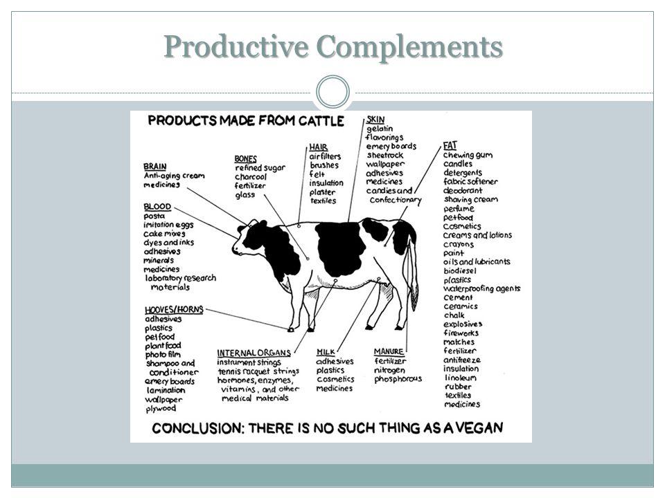 Productive Complements