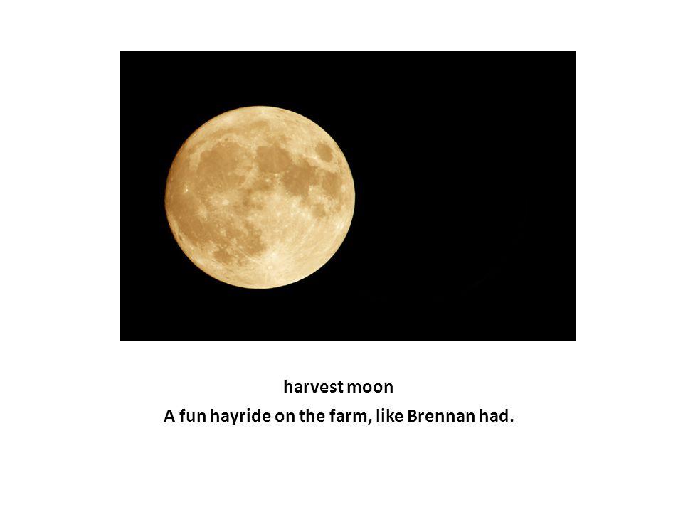 A fun hayride on the farm, like Brennan had. harvest moon