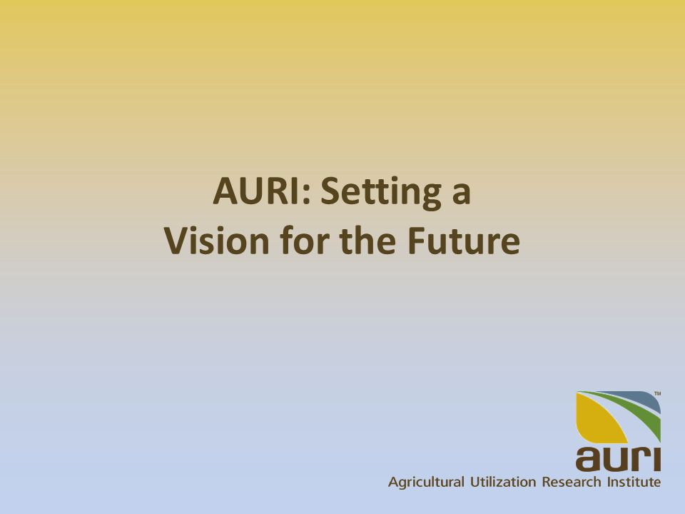 AURI: Setting a Vision for the Future