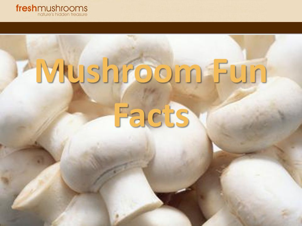 Hieroglyphics found in Egyptian tombs showed pharaohs considered mushrooms the plant of immortality .