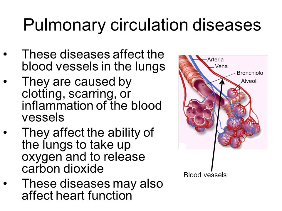 Pulmonary circulation diseases These diseases affect the blood vessels in the lungs They are caused by clotting, scarring, or inflammation of the blood vessels They affect the ability of the lungs to take up oxygen and to release carbon dioxide These diseases may also affect heart function Blood vessels