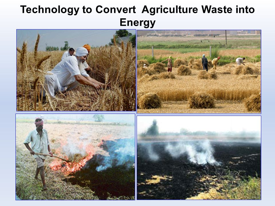 Technology to Convert Agriculture Waste into Energy 13