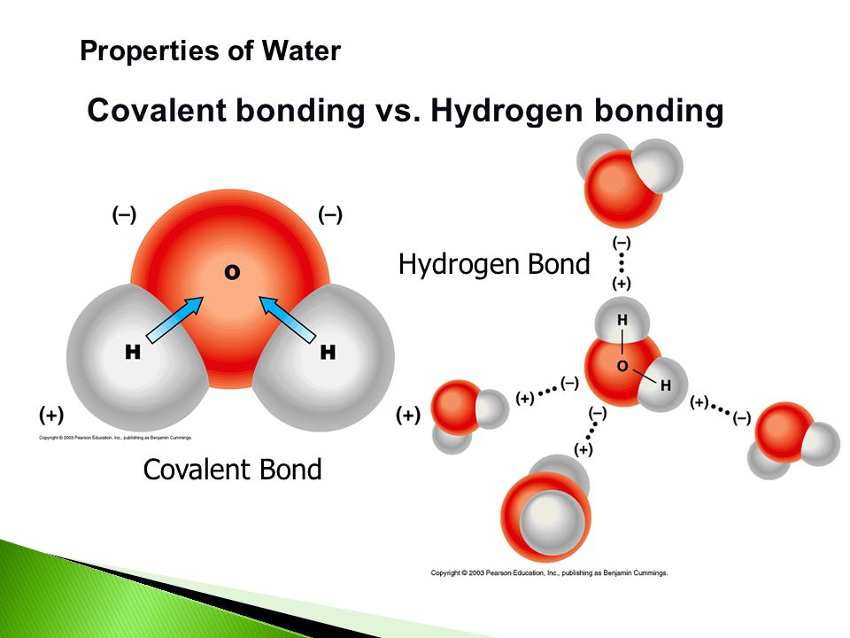 Properties of Water Covalent bonding Polar covalent bond – unequal sharing of electrons A great example of a molecule with polar covalent bonds is wat