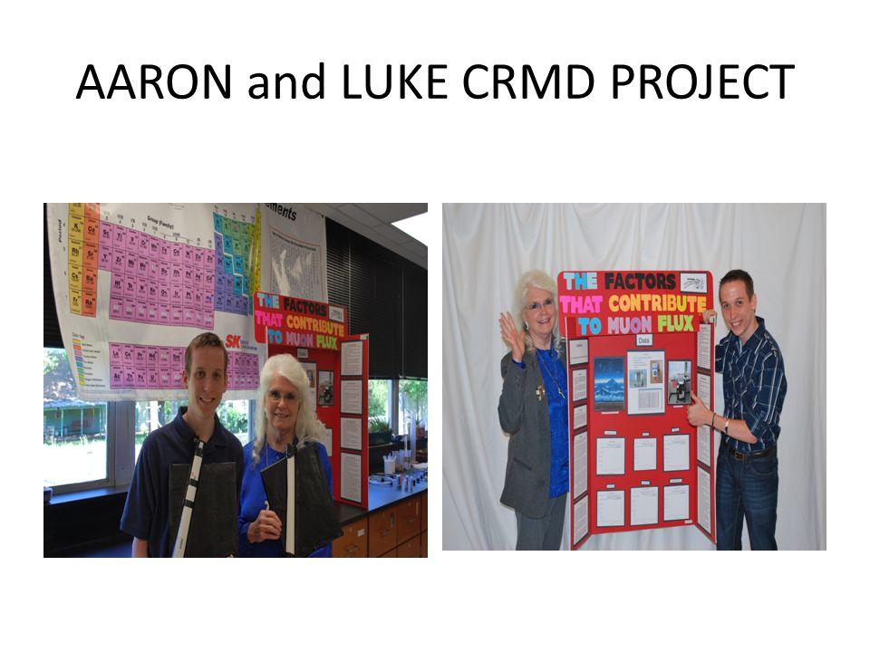AARON and LUKE CRMD PROJECT