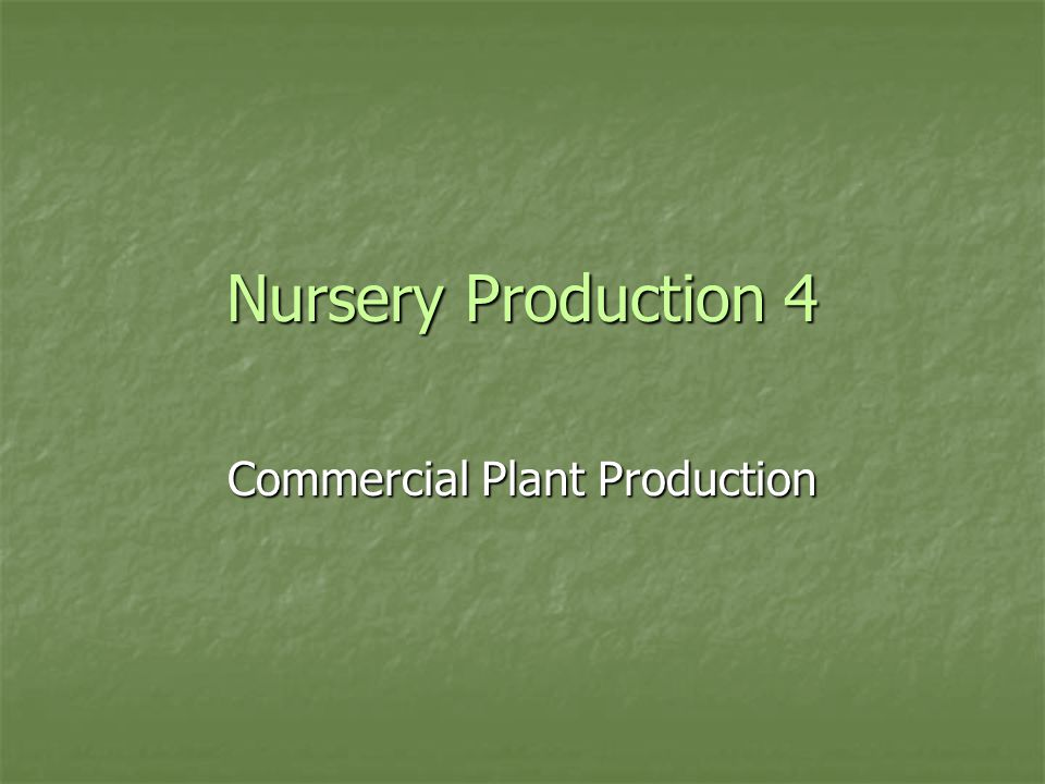 Nursery Production 4 Commercial Plant Production