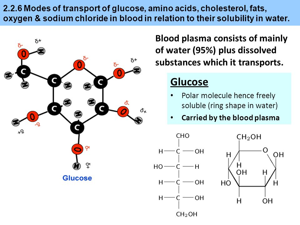2.2.6 Modes of transport of glucose, amino acids, cholesterol, fats, oxygen & sodium chloride in blood in relation to their solubility in water. Blood