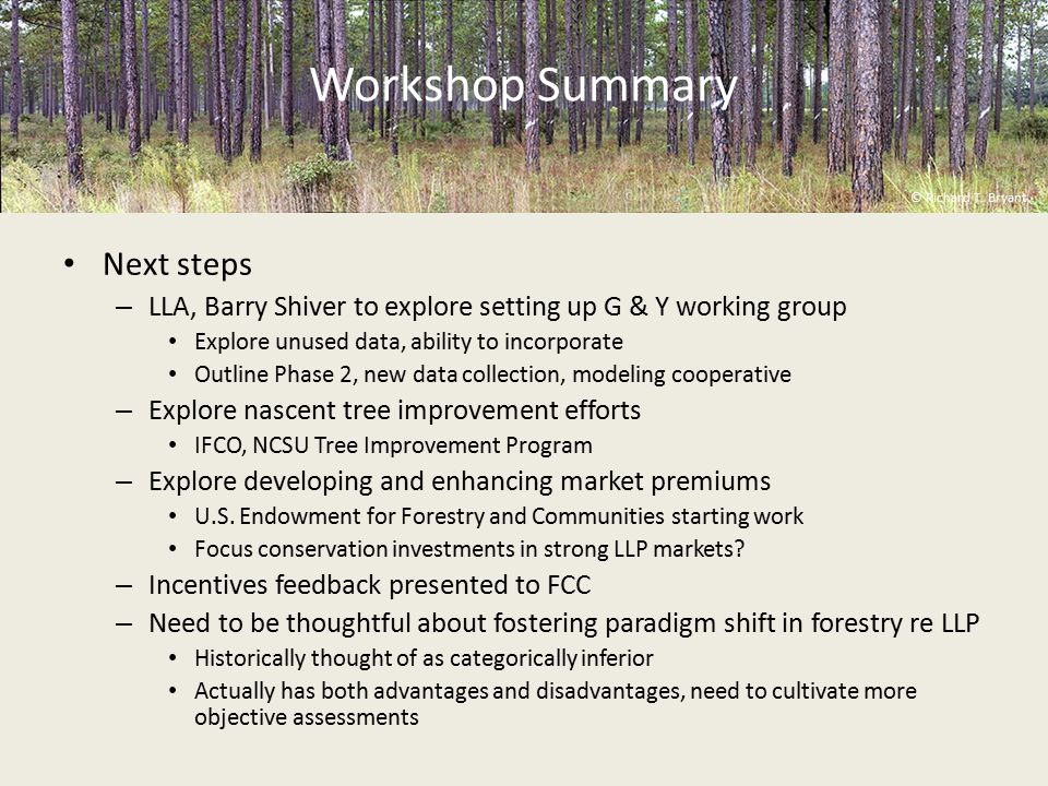 Workshop Summary Next steps – LLA, Barry Shiver to explore setting up G & Y working group Explore unused data, ability to incorporate Outline Phase 2, new data collection, modeling cooperative – Explore nascent tree improvement efforts IFCO, NCSU Tree Improvement Program – Explore developing and enhancing market premiums U.S.
