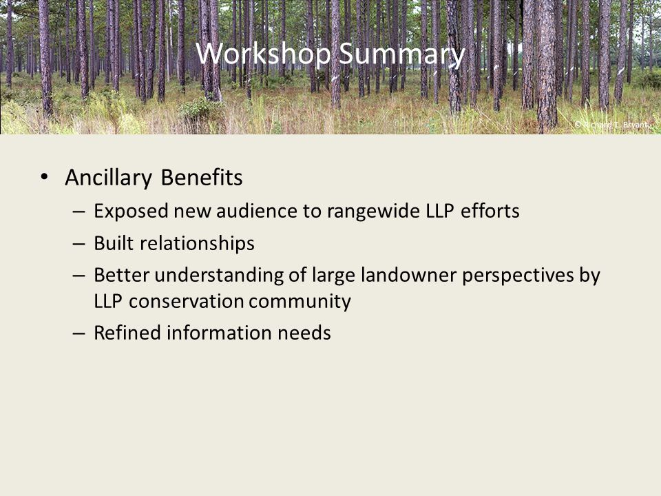 Workshop Summary Ancillary Benefits – Exposed new audience to rangewide LLP efforts – Built relationships – Better understanding of large landowner perspectives by LLP conservation community – Refined information needs © Richard T.
