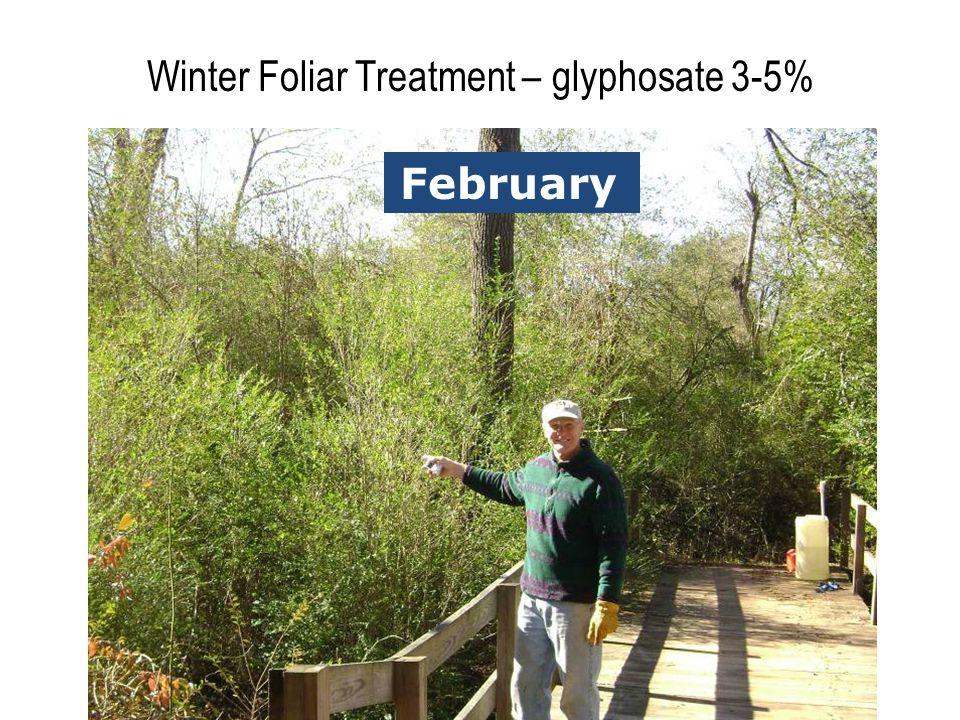 Winter Foliar Treatment – glyphosate 3-5% AprilFebruary