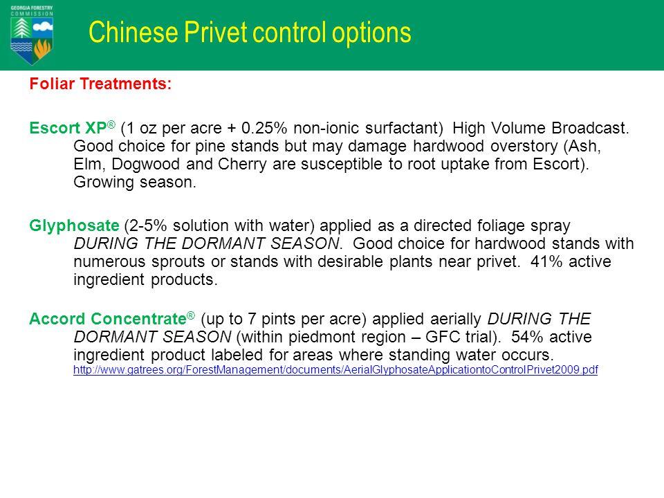 Chinese Privet control options Foliar Treatments: Escort XP ® (1 oz per acre + 0.25% non-ionic surfactant) High Volume Broadcast. Good choice for pine