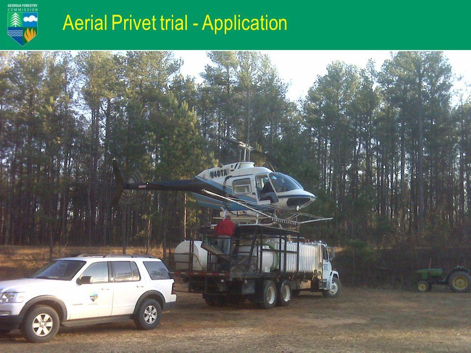 Aerial Privet trial - Application