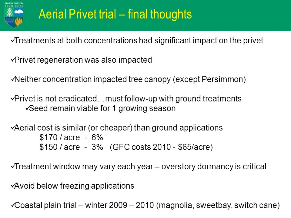 Aerial Privet trial – final thoughts Treatments at both concentrations had significant impact on the privet Privet regeneration was also impacted Neither concentration impacted tree canopy (except Persimmon) Privet is not eradicated…must follow-up with ground treatments Seed remain viable for 1 growing season Aerial cost is similar (or cheaper) than ground applications $170 / acre - 6% $150 / acre - 3% (GFC costs 2010 - $65/acre) Treatment window may vary each year – overstory dormancy is critical Avoid below freezing applications Coastal plain trial – winter 2009 – 2010 (magnolia, sweetbay, switch cane)