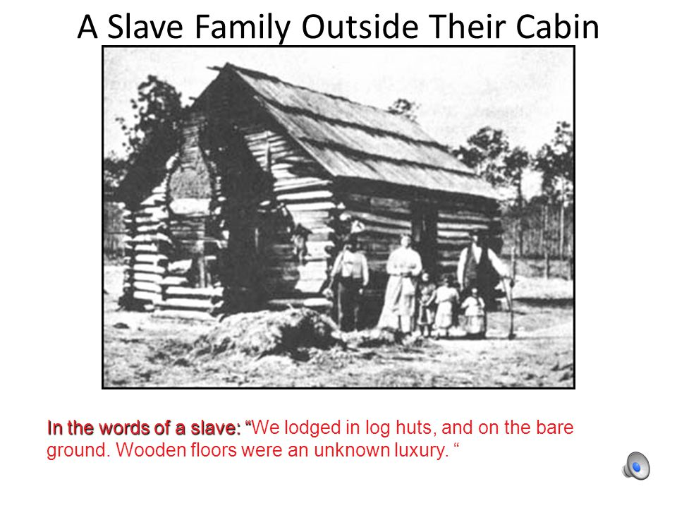 A Slave Family Outside Their Cabin In the words of a slave: In the words of a slave: We lodged in log huts, and on the bare ground.