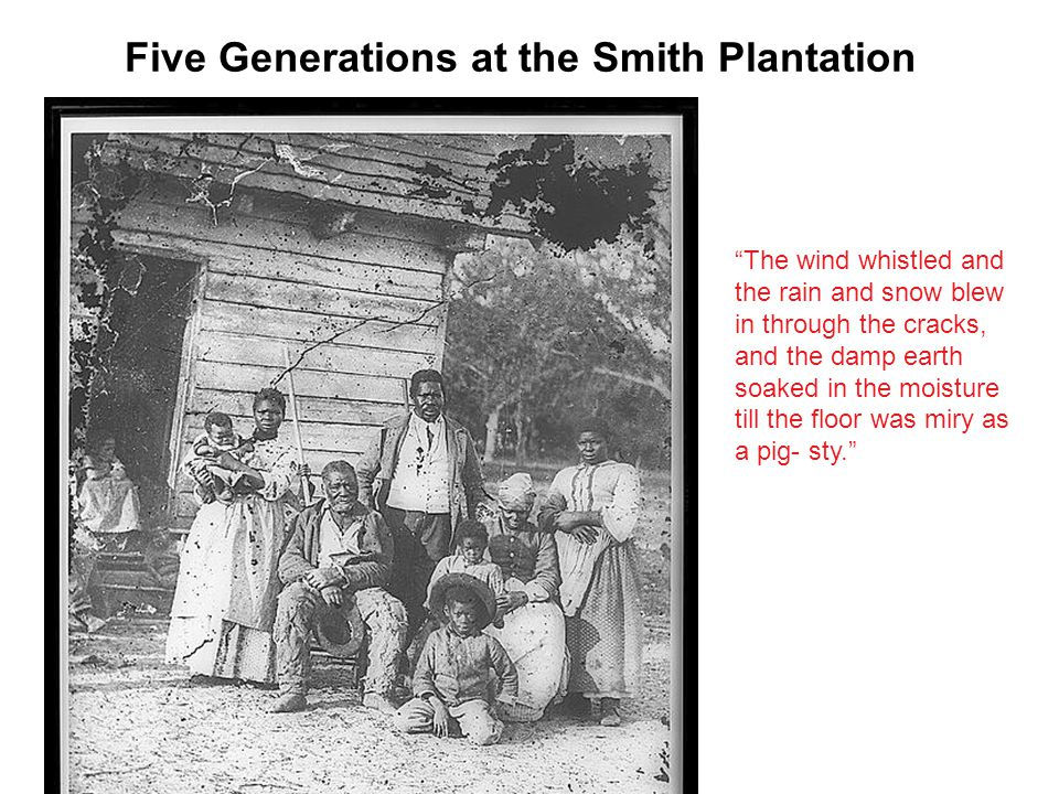 Five Generations at the Smith Plantation The wind whistled and the rain and snow blew in through the cracks, and the damp earth soaked in the moisture till the floor was miry as a pig- sty.