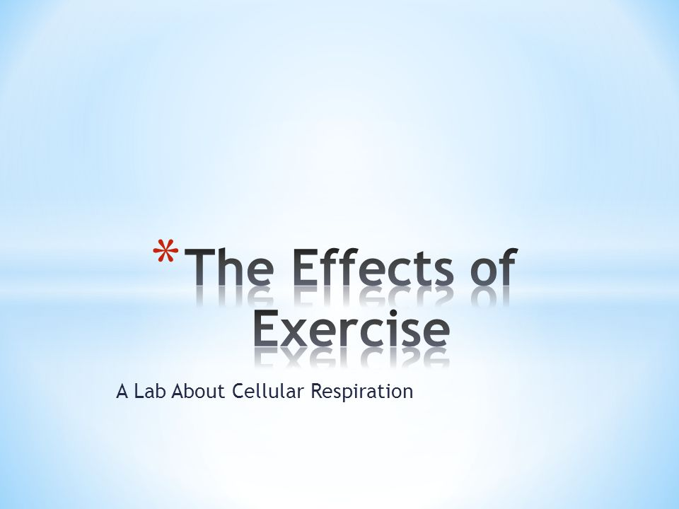 A Lab About Cellular Respiration