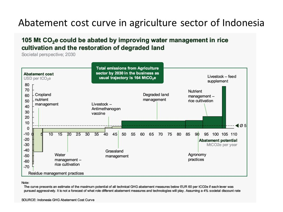 Abatement cost curve in agriculture sector of Indonesia