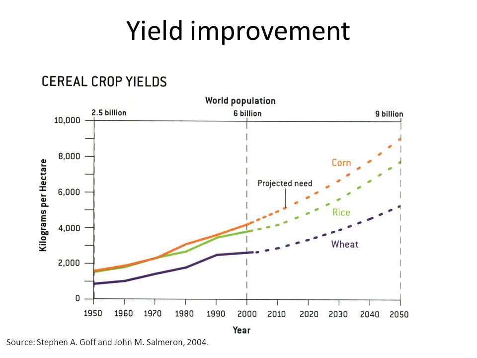 Source: Stephen A. Goff and John M. Salmeron, 2004. Yield improvement