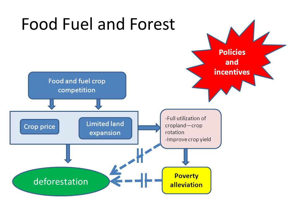 Food Fuel and Forest deforestation Crop price Limited land expansion Food and fuel crop competition -Full utilization of cropland—crop rotation -Improve crop yield Poverty alleviation Policies and incentives
