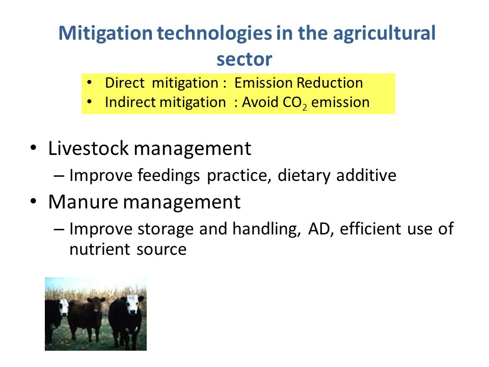 Mitigation technologies in the agricultural sector Livestock management – Improve feedings practice, dietary additive Manure management – Improve storage and handling, AD, efficient use of nutrient source Direct mitigation : Emission Reduction Indirect mitigation : Avoid CO 2 emission