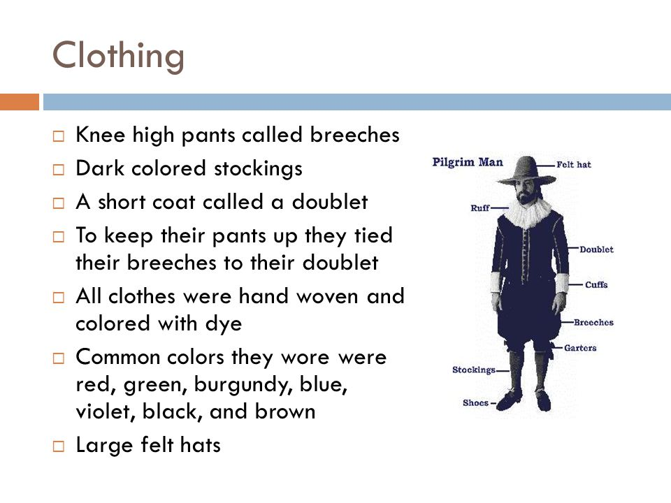 Clothing  Knee high pants called breeches  Dark colored stockings  A short coat called a doublet  To keep their pants up they tied their breeches