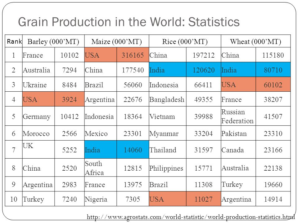 Grain Production in the World: Statistics Rank Barley (000'MT)Maize (000'MT)Rice (000'MT)Wheat (000'MT) 1France10102USA316165China197212 China 115180 2 Australia7294China177540India120620 India 80710 3 Ukraine8484Brazil56060Indonesia66411 USA 60102 4 USA3924Argentina22676Bangladesh49355 France 38207 5 Germany10412Indonesia18364Vietnam39988 Russian Federation 41507 6 Morocco2566Mexico23301Myanmar33204 Pakistan 23310 7 UK 5252India14060Thailand31597 Canada 23166 8 China2520 South Africa 12815Philippines15771 Australia 22138 9 Argentina2983France13975Brazil11308 Turkey 19660 10 Turkey7240Nigeria7305USA11027 Argentina 14914 http://www.agrostats.com/world-statistic/world-production-statistics.html