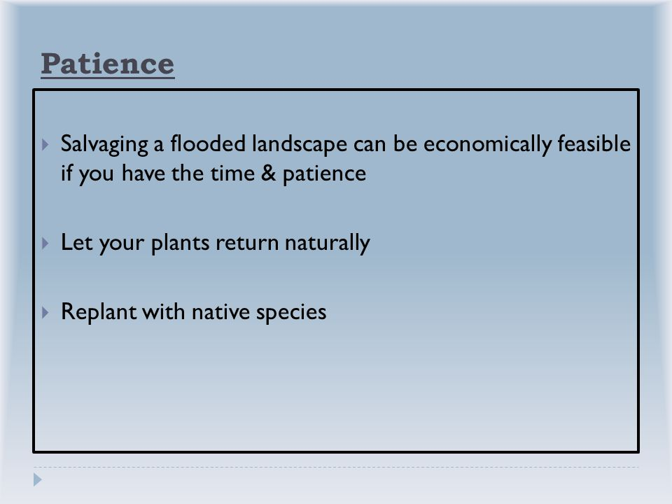 Patience  Salvaging a flooded landscape can be economically feasible if you have the time & patience  Let your plants return naturally  Replant with native species