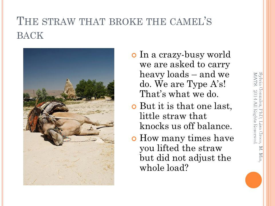 T HE STRAW THAT BROKE THE CAMEL ' S BACK In a crazy-busy world we are asked to carry heavy loads – and we do.