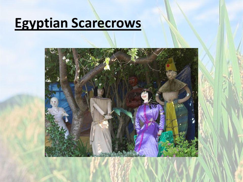 Egyptian Scarecrows