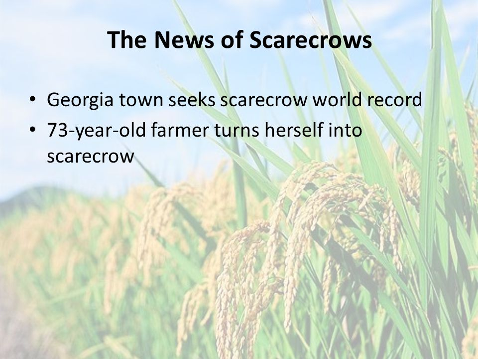 The News of Scarecrows Georgia town seeks scarecrow world record 73-year-old farmer turns herself into scarecrow