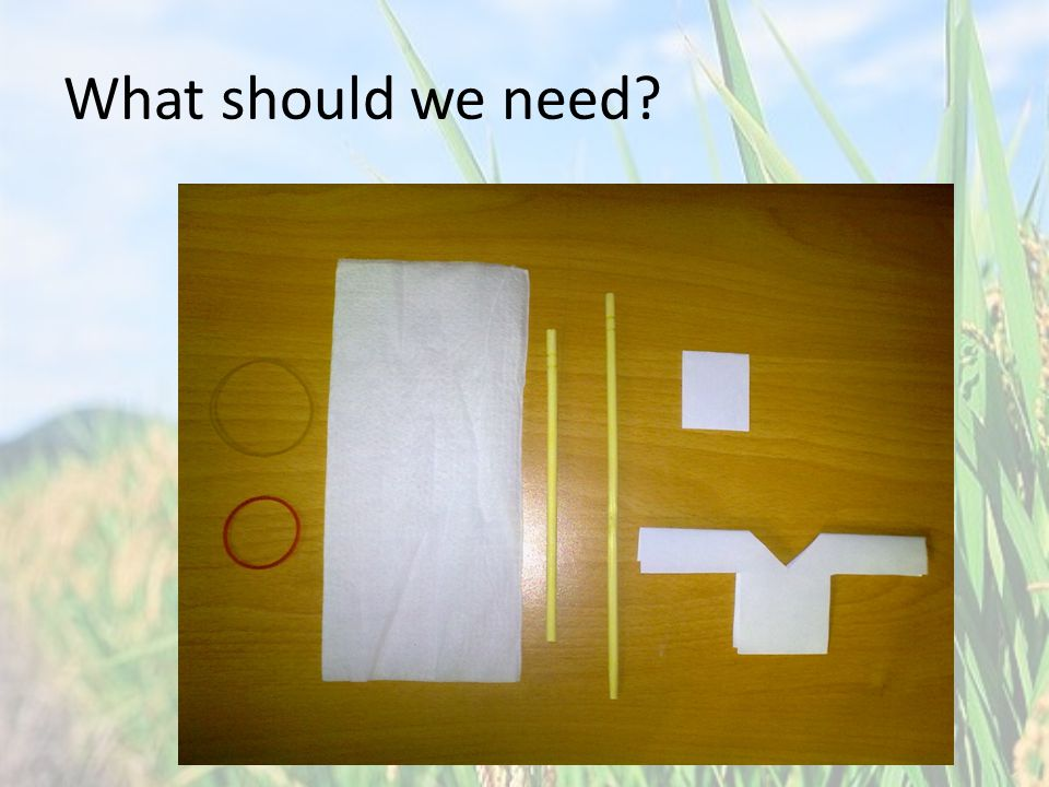 What should we need
