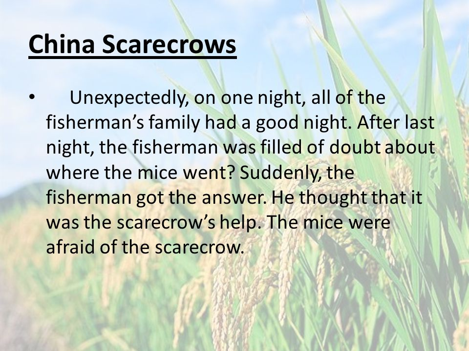 China Scarecrows Unexpectedly, on one night, all of the fisherman's family had a good night.