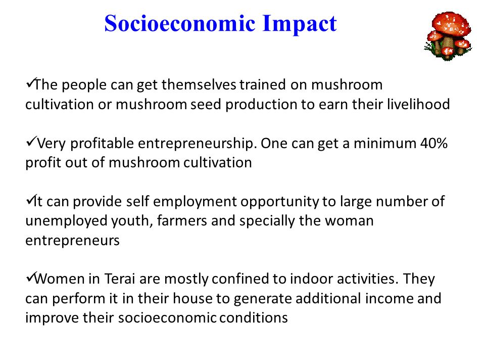 Socioeconomic Impact The people can get themselves trained on mushroom cultivation or mushroom seed production to earn their livelihood Very profitable entrepreneurship.