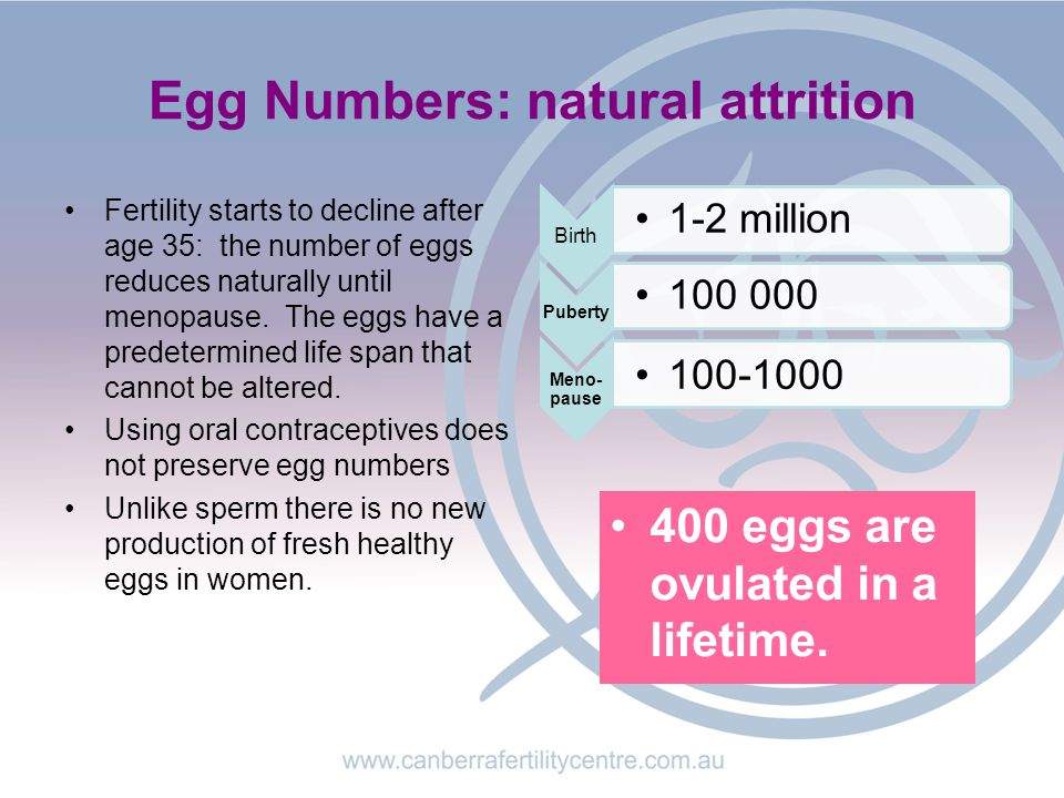 Egg Numbers: natural attrition Fertility starts to decline after age 35: the number of eggs reduces naturally until menopause.
