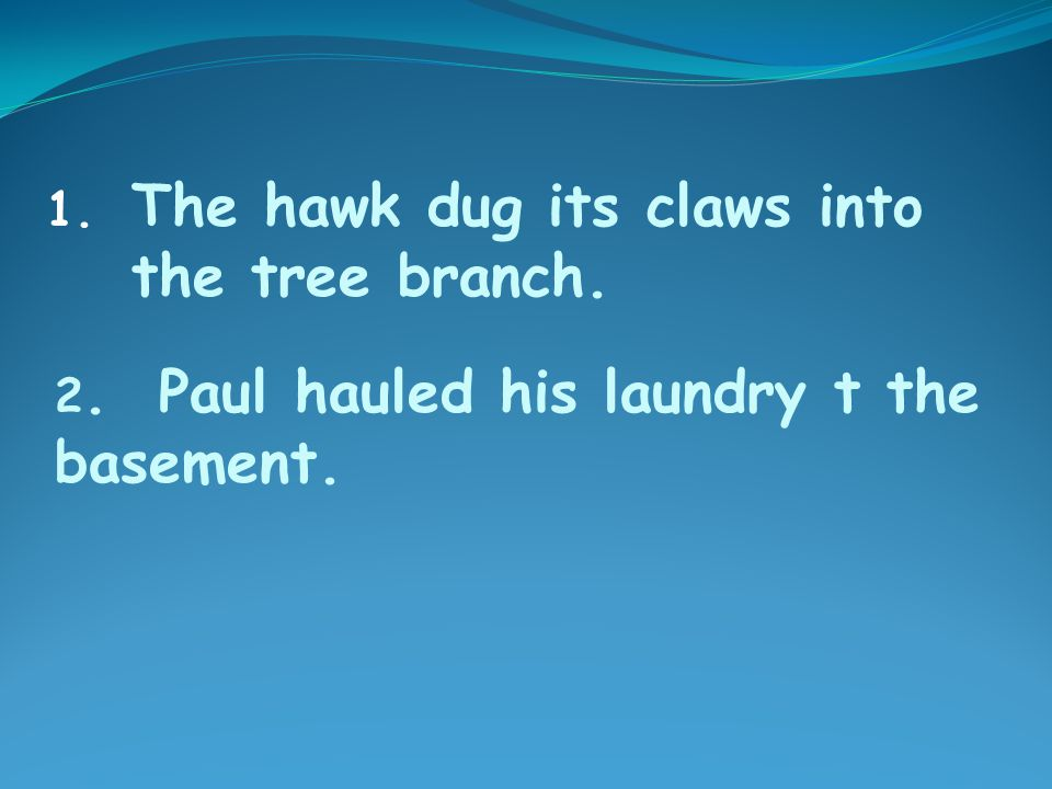 2. Paul hauled his laundry t the basement. 1. The hawk dug its claws into the tree branch.