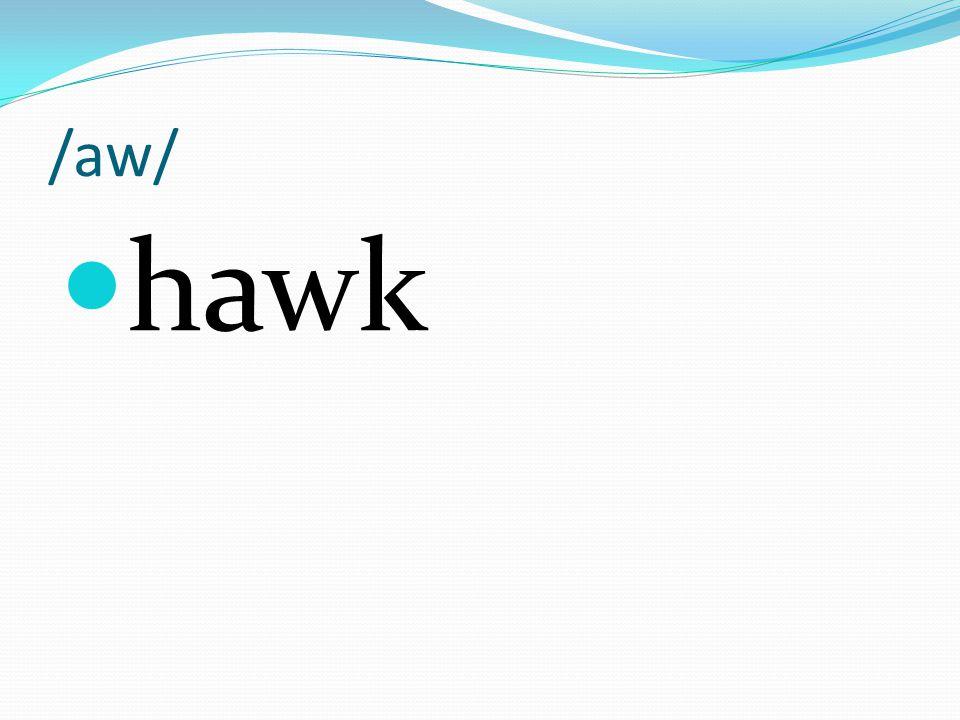 /aw/ hawk