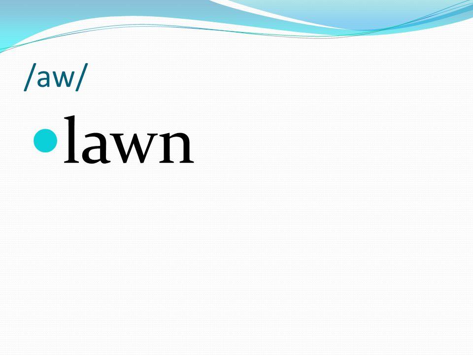 /aw/ lawn