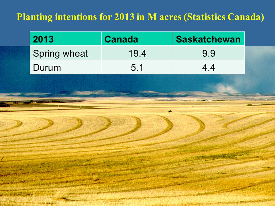 Planting intentions for 2013 in M acres (Statistics Canada)