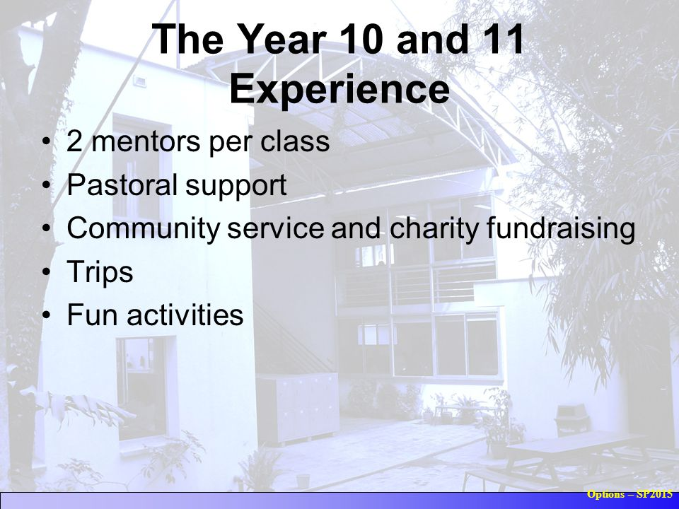 Options – SP2015 The Year 10 and 11 Experience 2 mentors per class Pastoral support Community service and charity fundraising Trips Fun activities