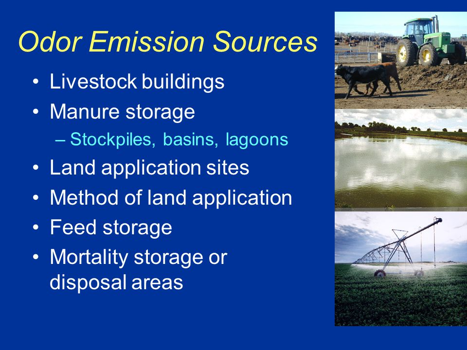 Odor Emission Sources Livestock buildings Manure storage –Stockpiles, basins, lagoons Land application sites Method of land application Feed storage Mortality storage or disposal areas