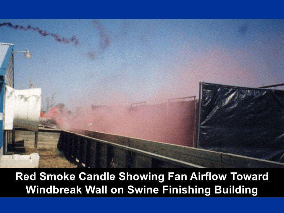 Red Smoke Candle Showing Fan Airflow Toward Windbreak Wall on Swine Finishing Building