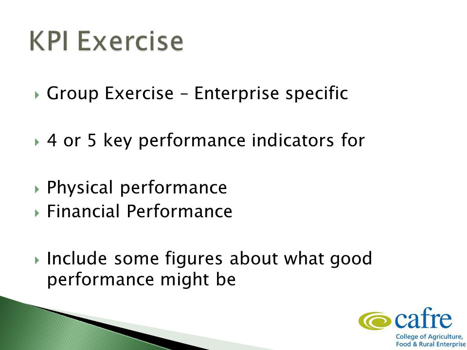  Group Exercise – Enterprise specific  4 or 5 key performance indicators for  Physical performance  Financial Performance  Include some figures about what good performance might be