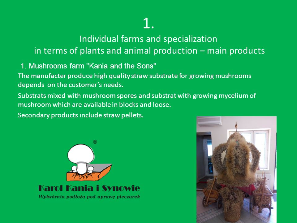 1. Individual farms and specialization in terms of plants and animal production – main products The manufacter produce high quality straw substrate fo