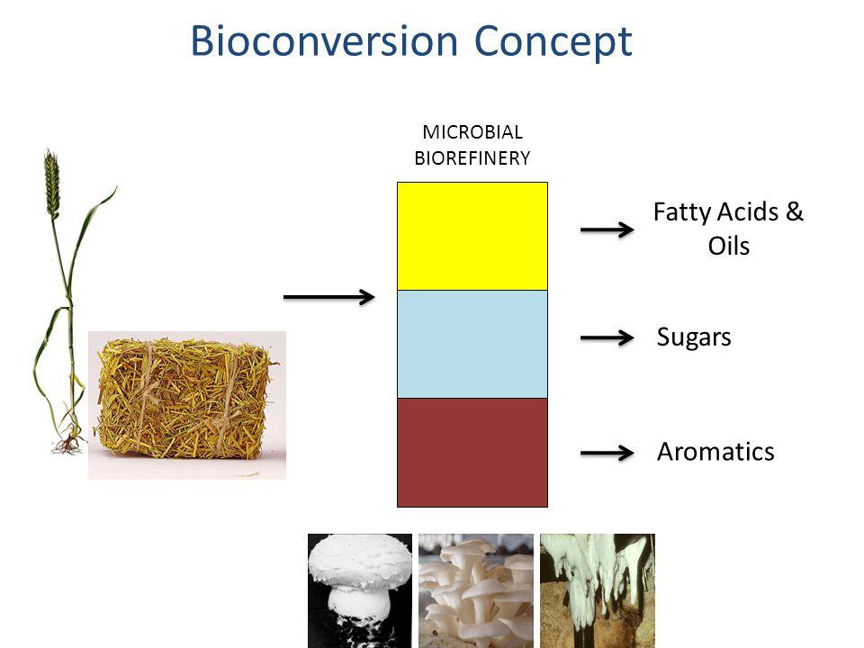 Bioconversion Concept MICROBIAL BIOREFINERY Fatty Acids & Oils Sugars Aromatics
