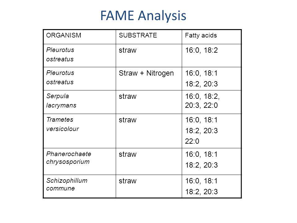 FAME Analysis ORGANISMSUBSTRATEFatty acids Pleurotus ostreatus straw16:0, 18:2 Pleurotus ostreatus Straw + Nitrogen16:0, 18:1 18:2, 20:3 Serpula lacrymans straw16:0, 18:2, 20:3, 22:0 Trametes versicolour straw16:0, 18:1 18:2, 20:3 22:0 Phanerochaete chrysosporium straw16:0, 18:1 18:2, 20:3 Schizophillum commune straw16:0, 18:1 18:2, 20:3