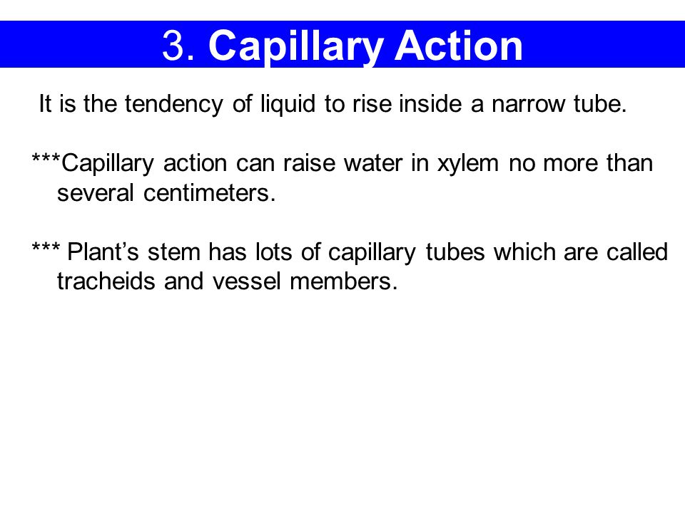 3.Capillary Action It is the tendency of liquid to rise inside a narrow tube.