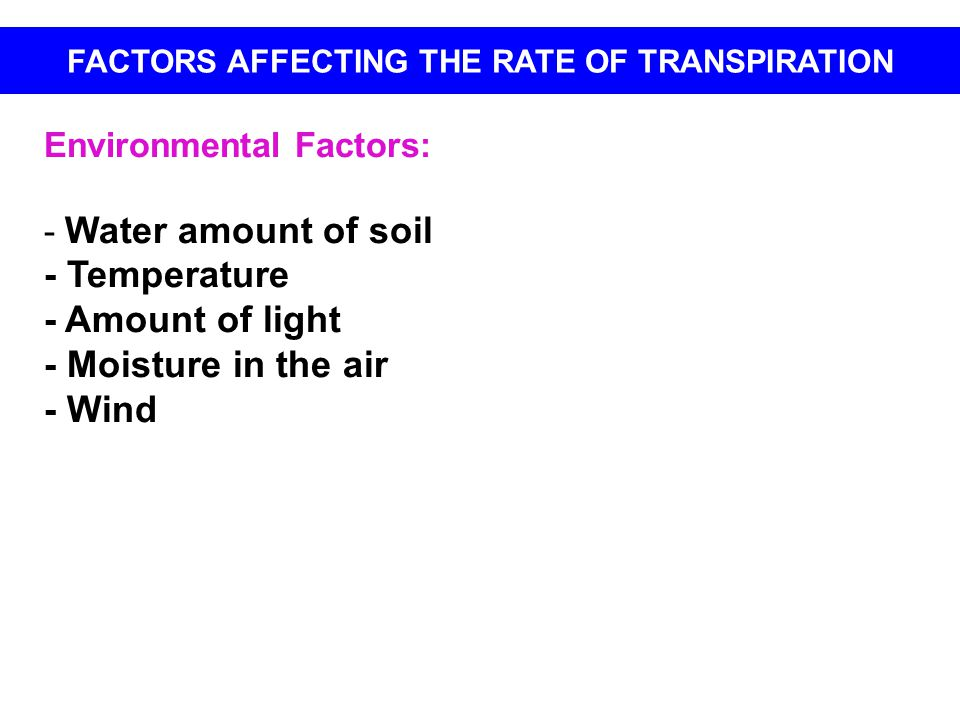 Environmental Factors: - Water amount of soil - Temperature - Amount of light - Moisture in the air - Wind FACTORS AFFECTING THE RATE OF TRANSPIRATION