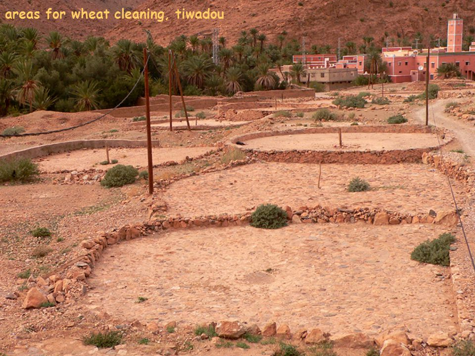 areas for wheat cleaning, tiwadou