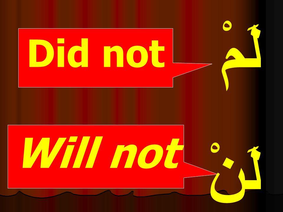 Did not Will not لَمْ لَنْ