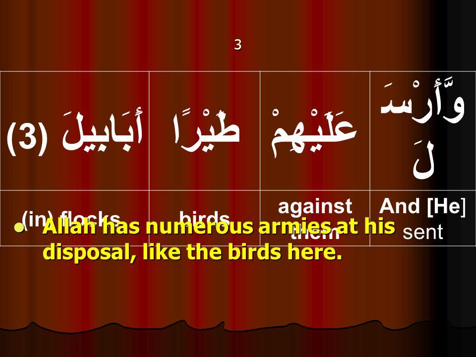 3 وَّأَرْسَ لَ عَلَيْهِمْطَيْرًا أَبَابِيلَ ( 3) And [He] sent against them birds(in) flocks, Allah has numerous armies at his disposal, like the birds here.