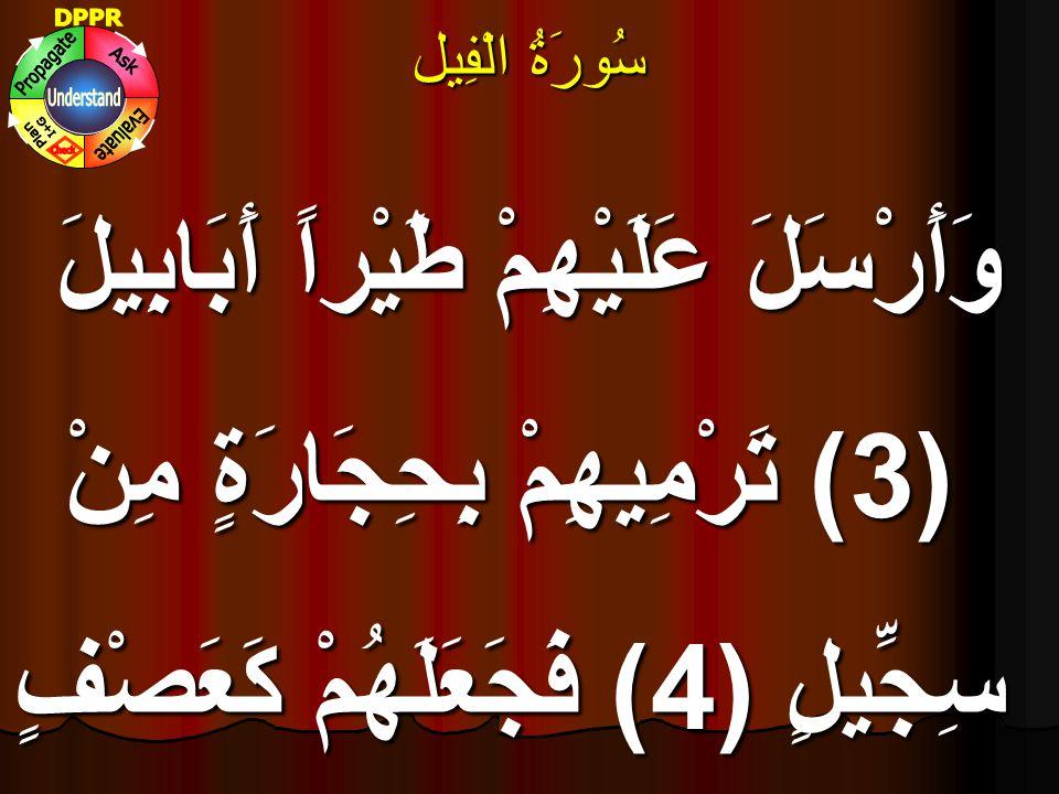 سُورَۃُ الْفِيل وَأَرْسَلَ عَلَيْهِمْ طَيْراً أَبَابِيلَ (3) تَرْمِيهِمْ بِحِجَارَةٍ مِنْ سِجِّيلٍ (4) فَجَعَلَهُمْ كَعَصْفٍ مَأْكُولٍ (5)